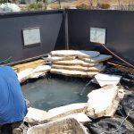 בניית בריכת דגים